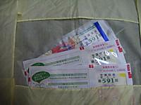 2010_09170005