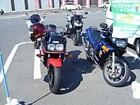 2010_10170006